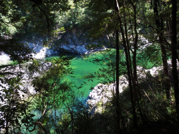 The Pelorus River - where parts of The Hobbit were filmed. It was actually happenstance that I came across it.
