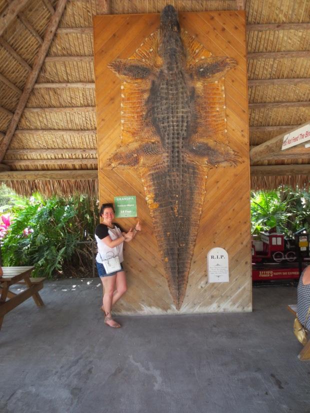 Grandpa, huge freakin' alligator, now dead and skinned...