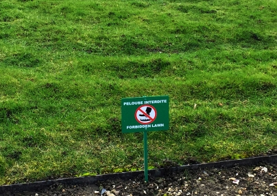 """Forbidden lawn"" here, people..."