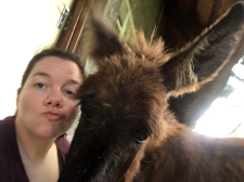 Jackie the donkey <3