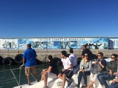 Arrival at Robben Island