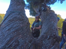 Me in the tree