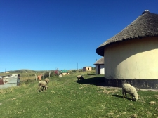 RTW_2017_dag_0092_south_africa_coffee_bay_xhosa_village (07)