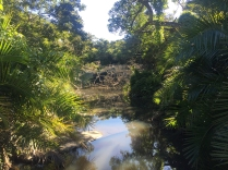"""The Xhosa """"Sacred Pool""""... Apparently..."""