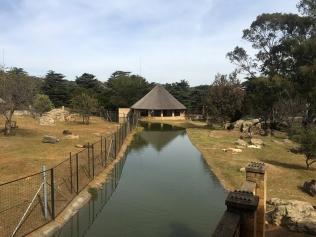 RTW_2017_dag_0106_south_africa_johannesburg_zoo (39)