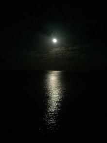 Moonrise from my platform