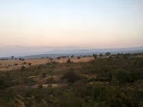 Landscape from the Tazara