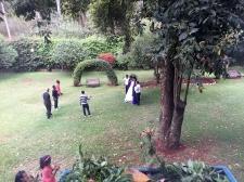 Wedding in the garden outside my room. I stalk.