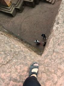 """""""Long way to fall, Master Frodo!"""""""