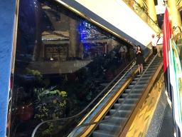An aquarium nex to the escalators, of course...