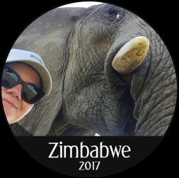 sirkel_zimbabwe_elefant