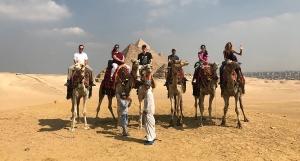 Got camel?