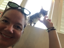 Georgetown Cat Cafe