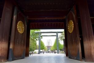 RTW_2018_dag_0406_tokyo_cherry_blossom (91)