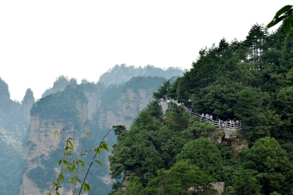 Zhangjiajie / Avatar Mountain