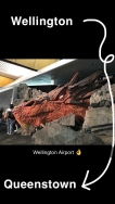 Wellington Airport: Smaug <3