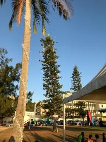 Port Vila Christmas