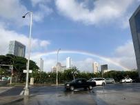 Rainbows for days