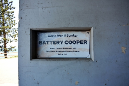 Battery Cooper